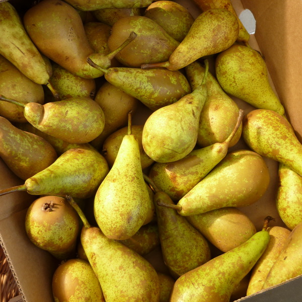 Pears Conference 500g