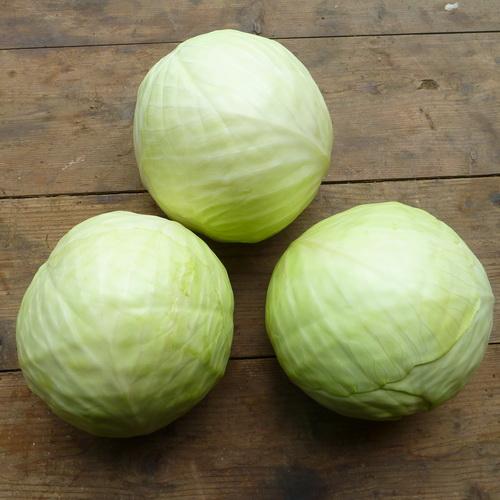 White Cabbage per kg